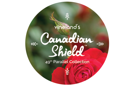 vinelands canadian shield